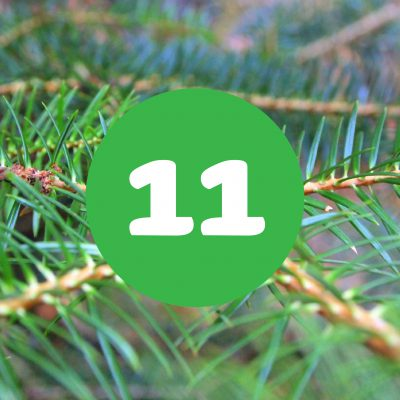 als_weihnachtskalender_ziffer11