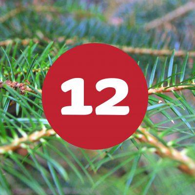 als_weihnachtskalender_ziffer12
