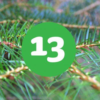 als_weihnachtskalender_ziffer13
