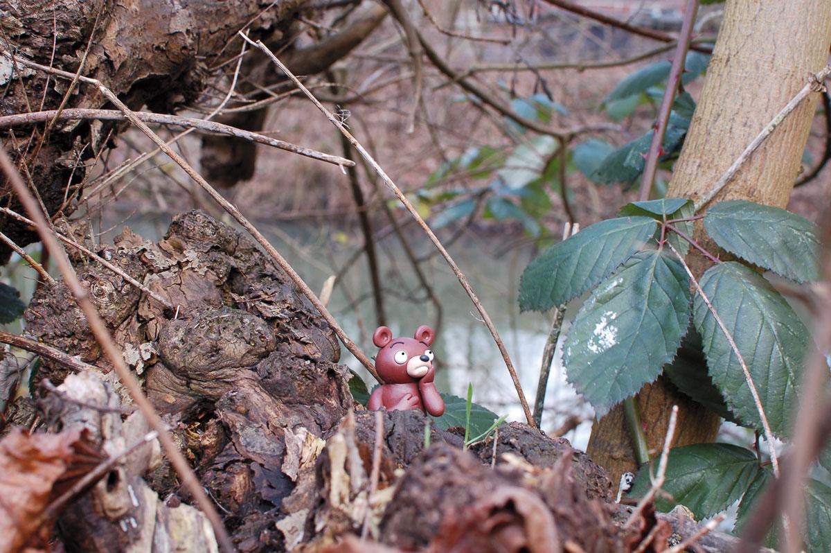 nachdenklicher Wuhlebär am Wuhlegestade