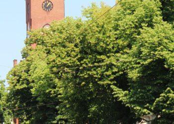 Friedrichshagener Kirchturm hinter grünen Baumkronen von der südlichen Bölschestraße ausgesehen