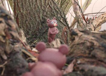 Wuhlebär im Feuchtbiotop