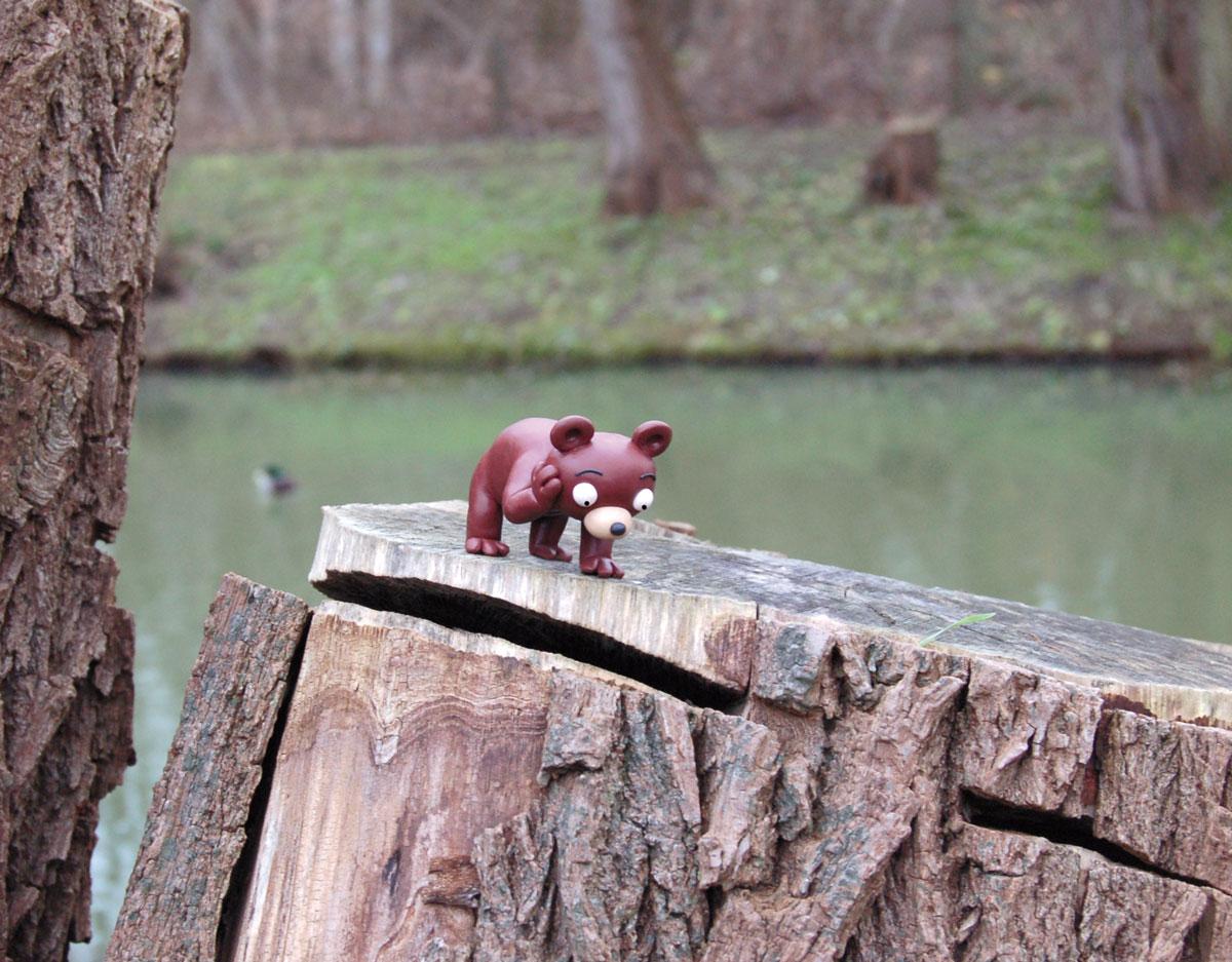 Der Wuhlebär betrachtet ungehalten die Einschnitte in seinem Habitat