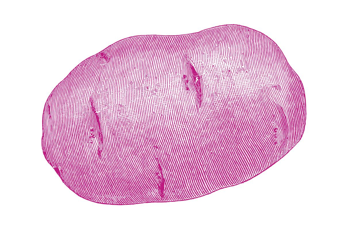 Kartoffelstich