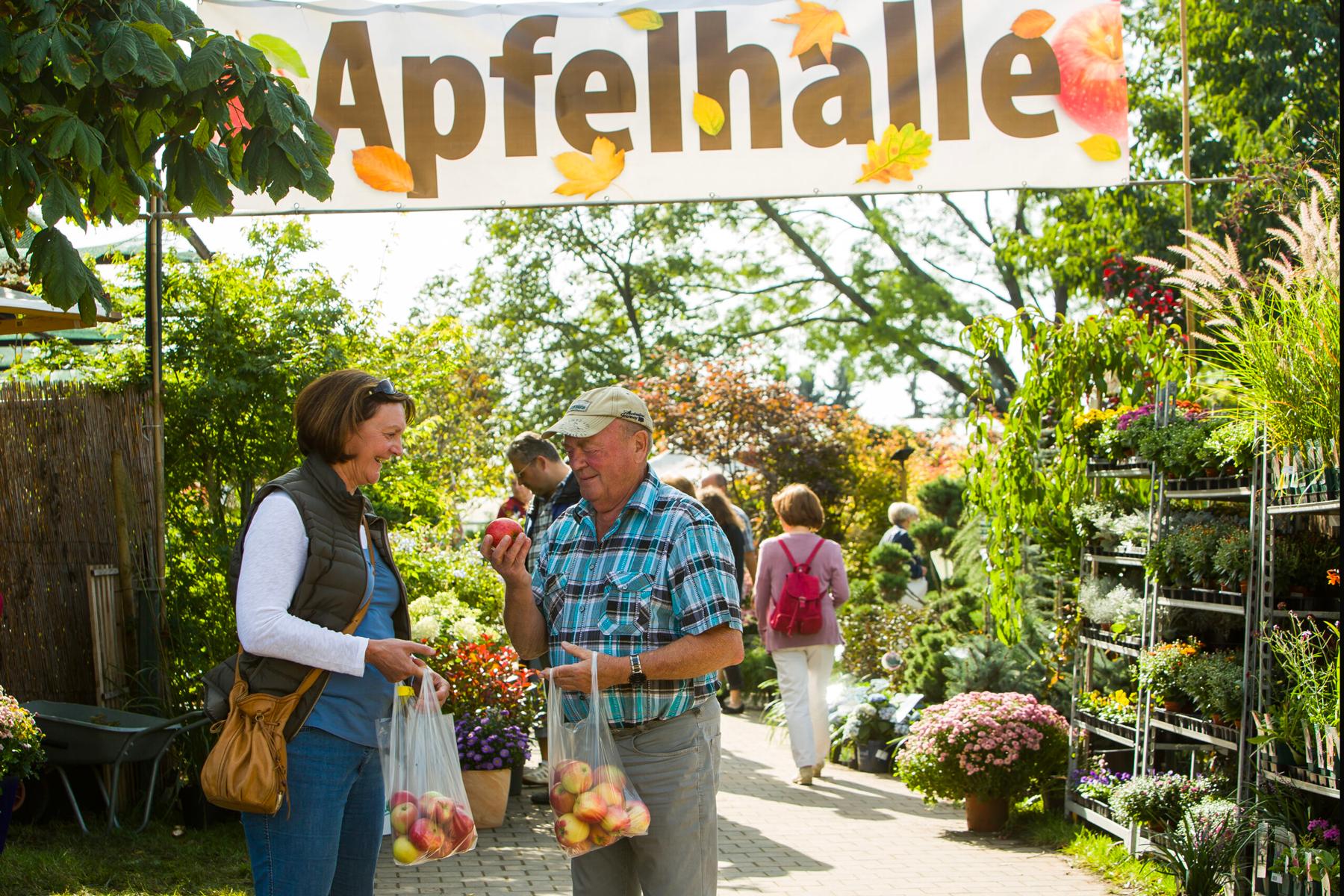 Apfelverkostung, Beratung und Verkauf in der Späth'schen Baumschulen